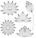 Lotus flower set royalty free illustration
