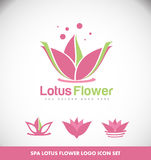 Lotus flower spa logo Stock Photos