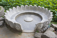 Lotus Flower Stone Chair Royalty Free Stock Photos