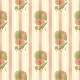 Lotus-Flower-And-Stripes-Pattern Royalty Free Stock Photo