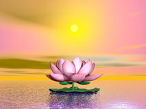 Lotus flower by sunset - 3D render Stock Image