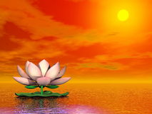 Lotus flower by sunset - 3D render Royalty Free Stock Photography