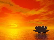 Lotus flower by sunset - 3D render Royalty Free Stock Images