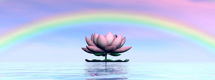 Lotus flower under rainbow - 3D render Stock Photos