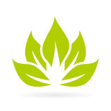 Lotus flower vector icon Royalty Free Stock Images