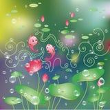 Lotus flower and water drop background. Lotus flower greeting card, water lily and fish background Royalty Free Stock Image
