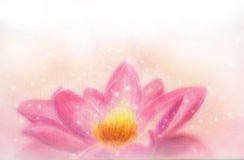 Lotus flower and white circle bokeh and white mist. Illustration collage. Royalty Free Stock Photography