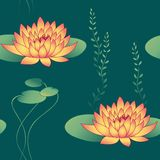 Lotus flowers. And waterweed in seamless pattern Royalty Free Stock Images