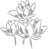 Lotus Flowers illustration de vecteur
