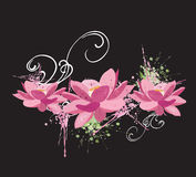 Lotus flowers. Illustration of lotus flowers and grungy patterns Stock Photo