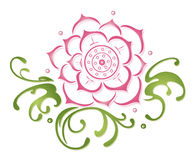 Lotus flowers. Colorful and filigree lotus flower, pink and green Stock Photography