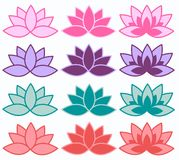 Lotus flowers in different colours Stock Photo