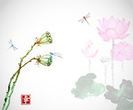 Lotus flowers and dragonflies on white background. Traditional oriental ink painting sumi-e, u-sin, go-hua. Contains. Hieroglyph - happiness Stock Photo