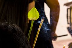 Lotus flowers and incense smoke for worship. stock image