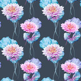 Lotus flowers pattern Royalty Free Stock Photo