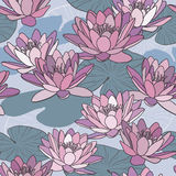 Lotus flowers in seamless pattern Royalty Free Stock Photo