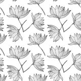 Lotus Flowers Seamless Pattern Stock Photography