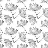 Lotus Flowers Seamless Pattern Stock Photography