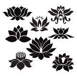 Lotus flowers  Tattoo - Illustration on white background Stock Photography