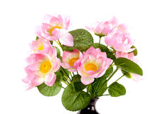 Lotus flowers in vase Royalty Free Stock Photos