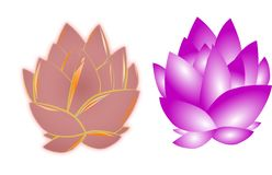 Lotus flowers on white Royalty Free Stock Images