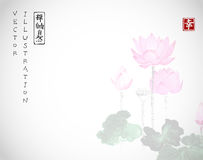 Lotus flowers on white background. Traditional oriental ink painting sumi-e, u-sin, go-hua. Hieroglyphs - zen, freedom. Nature Stock Photo