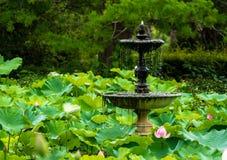 Lotus Fountain Stock Photography