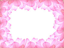 Lotus frame. The border of the lotus superimposed component Royalty Free Stock Photography