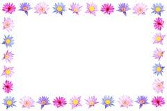 Lotus frame on white. Background Royalty Free Stock Photos