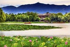 Lotus Garden Boat Summer Palace Beijing China Stock Photos