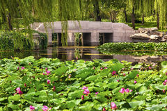 Lotus Garden Reflection Bridge Summer-Paleis Peking China stock fotografie