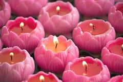 Lotus Gevormde Kaarsen Royalty-vrije Stock Foto