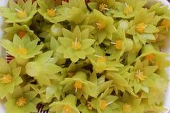 Lotus Gevormde Kaarsen Stock Foto's