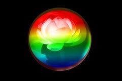 Lotus Globe Stockfoto