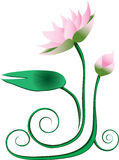 Lotus graphic. A pink lotus with green leaf Royalty Free Stock Photos
