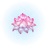 Lotus in hand-drawn style Royalty Free Stock Photos