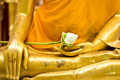 Lotus i den handbuddha statyn Arkivbilder