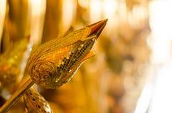 Lotus i Wat Ban Den, templet i Chiang Mai Thailand Royaltyfri Foto