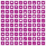 100 lotus icons set grunge pink. 100 lotus icons set in grunge style pink color isolated on white background vector illustration Stock Photos