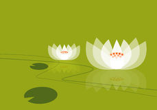Lotus illusion. Graphic form the show the lotus flower Royalty Free Stock Images