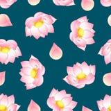 Lotus indien rose sur Teal Background vert Nucifera de Nelumbo, lotus sacré, haricot d'Inde, lablab d'égypte illustration de vecteur