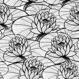 Lotus ink hand drawn seamless pattern/Black and white water lily Stock Images