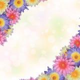 Lotus-kaderachtergrond Stock Afbeelding