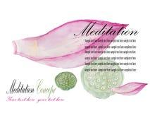 Lotus-Korolla und Lotosfrucht übergeben gezogene Aquarellmalerei Meditationsdesign Auch im corel abgehobenen Betrag Stockfotos