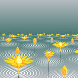 Lotus lake. Editable  illustration of lotus flowers emerging from a lake Stock Photo