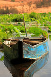 Lotus lake Stock Images