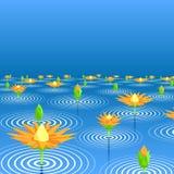 Lotus lake. Editable vector illustration of lotus flowers emerging from a lake Royalty Free Stock Image