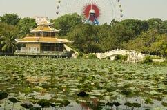 Lotus lake. Dam Sen playground with full view at the lotus lake stock images