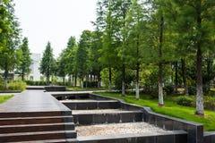 Lotus lake park scenery Stock Images