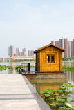 Lotus lake park scenery Stock Image